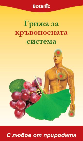 Грижа за кръвоносната система